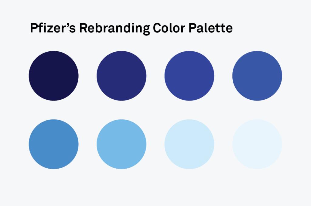 Brand Identity Design Colors