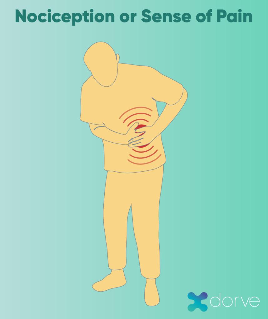 Sensorial UX: Nociception
